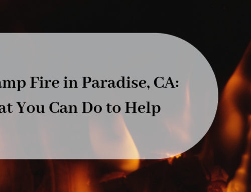 The Camp Fire in Paradise, CA: What You Can Do to Help with California Fires