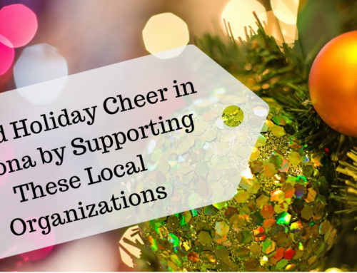 Spread Holiday Cheer: Support These Arizona Organizations